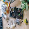 Drie tips voor een sfeervolle tuin